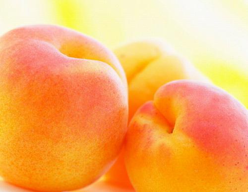 Армянские садоводы ожидают сокращения урожая абрикосов